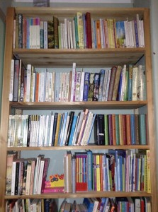 A neatly arranged bookcase containing lots of books