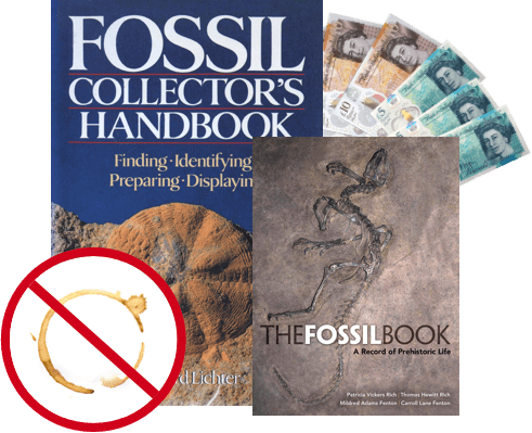 does the condition of my used fossil and paleontology books matter image