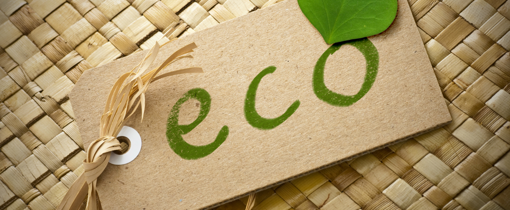 Top 5 Apps for the Eco-Friendly